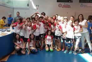 torneo-pallavolo-1-1-293x200